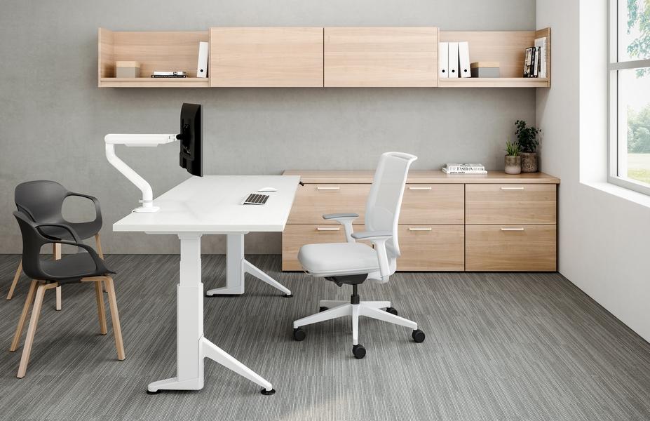 Brisa Desk ESI