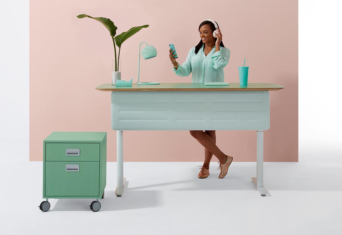 DARRAN_Chameleon_standing_desk
